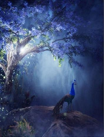 Katebackdrop:Kate Blue Night Tree Printed Backdrop Peacock For Children Fantasy Background