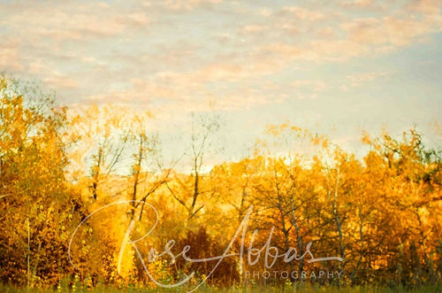 Kate Autumn Dusk Golden Grove Backdrop Entworfen von Rose Abbas