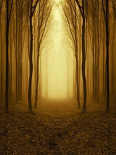 Katebackdrop:Kate Natural Brown Road With Forest Photography Backdrops