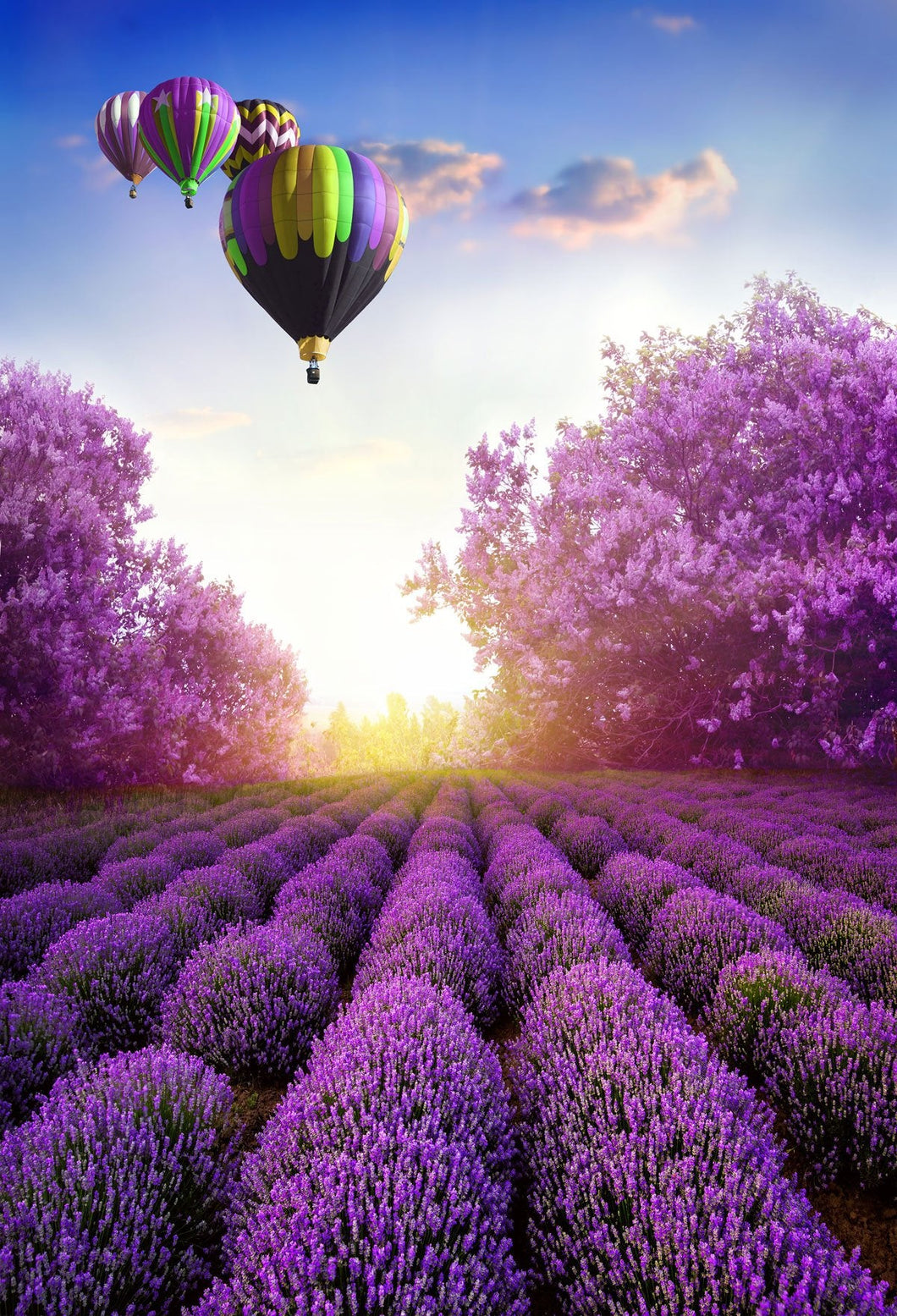 Katebackdrop:Kate Hot Air Balloon Purple flower Garden Backdrop