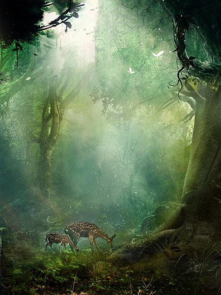 Katebackdrop:Kate Fairy Tale Forest Backdrop Animal Photo Background