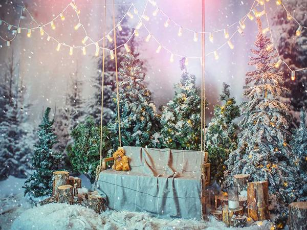 Katebackdrop:Kate Christmas Decoration Photography Backdrop Snow Scene Photo Background