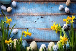 Katebackdrop:Kate Easter Eggs Yellow Flower in Blue Wooden Wall Background
