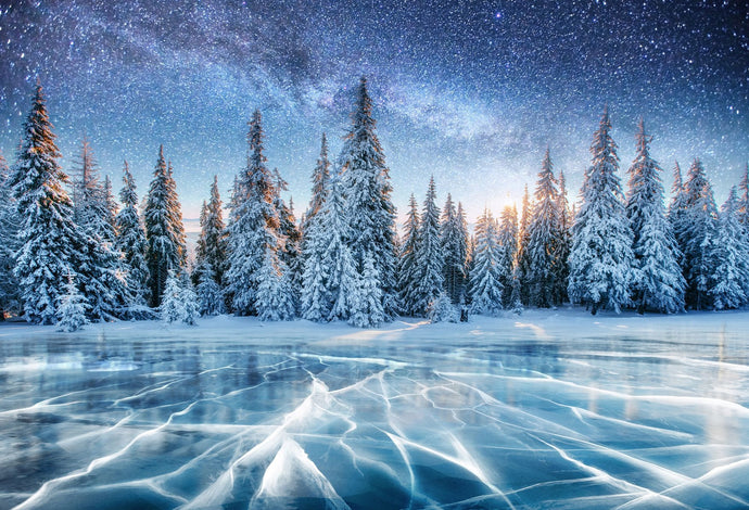 Katebackdrop:Kate Frozen Lake Snowy Forest Star Night Backdrop for Photography