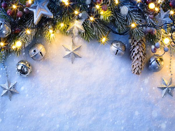 Katebackdrop:Kate Christmas Backdrop with Pine branches Snow Winter