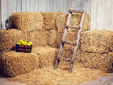 Katebackdrop:Kate Farmhouse Haystack Ladder Fruit Nature Children Backrops