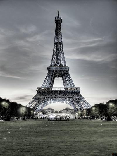 Katebackdrop:Kate Black And White Eiffel Tower Backdrop France