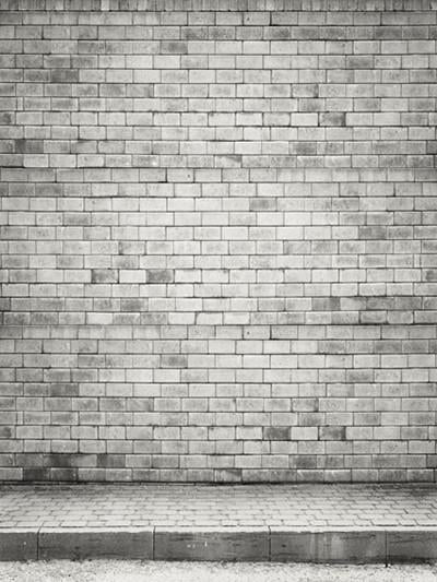 Katebackdrop:Kate Light Grey With Brick Wall Photo Backdrop