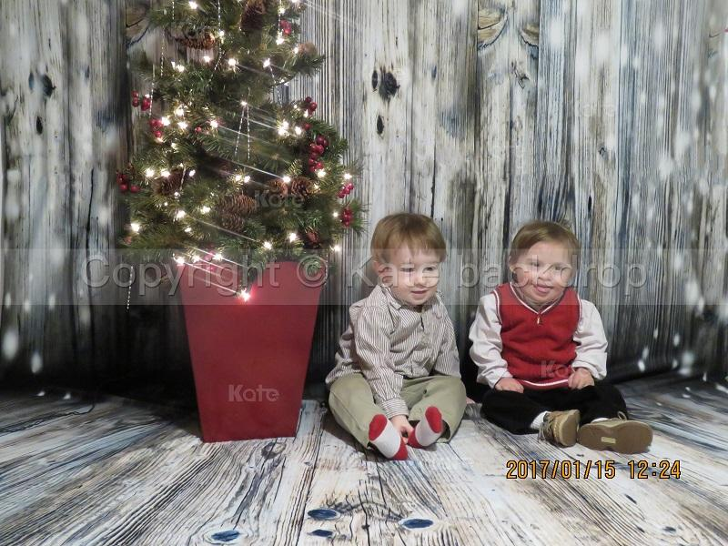 Laden Sie das Bild in den Galerie-Viewer, Katebackdrop:Kate Light Gray Wood Children Christmas Photography Backdrop