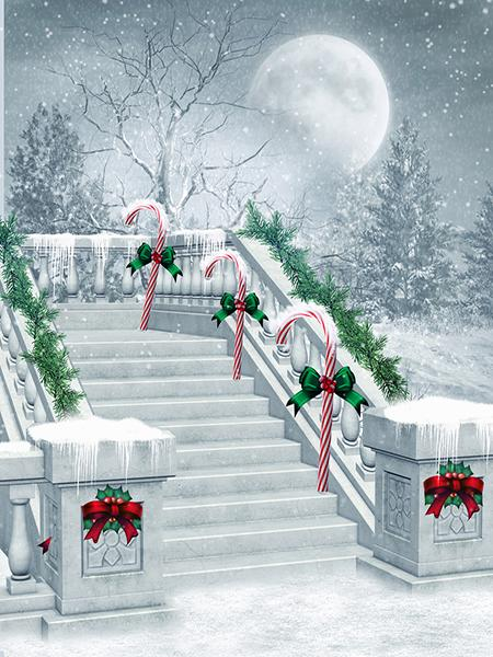 Katebackdrop:Kate Christmas Winter Scene Moon Snowflake Background