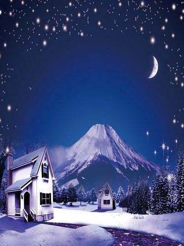 Katebackdrop:Kate Winter World Night Scenery Blue Sky Snow Moon Backdrop