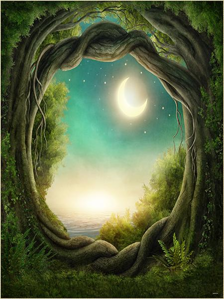 Katebackdrop:Kate Fantasy Background Moon forest Photography Backdrop