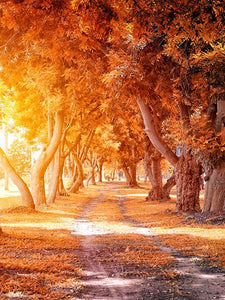 Katebackdrop:Kate Autumn Outdoor Scene Path Photography Backdrop