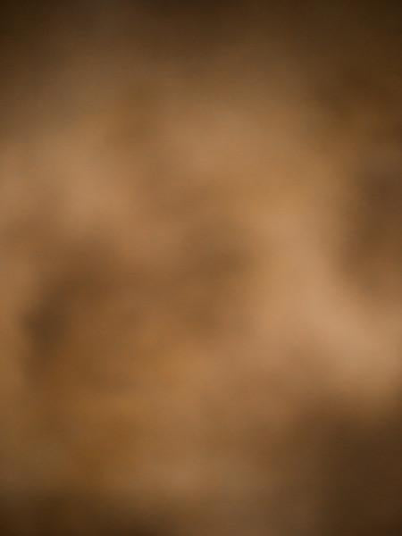 Katebackdrop:Kate Blurry Brown Backdrop Photography Abstract Background