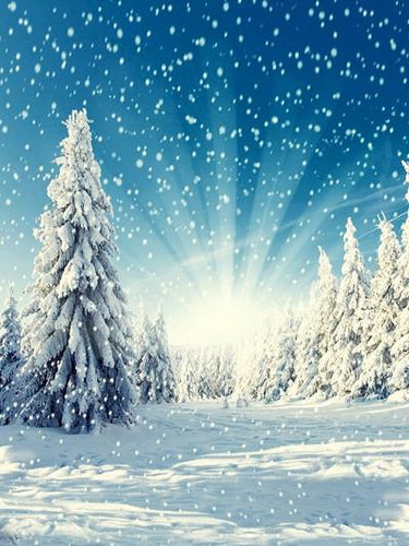Katebackdrop:Kate Winter Backgrounds Sunshine Snowfield Photography Backdrop