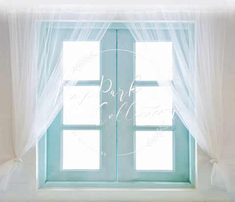 Kate Teal Window Doors Backdrop Entworfen von Pine Park Collection