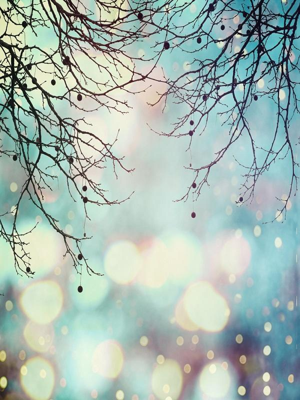 Katebackdrop:Kate Winter Bokeh Branches backdrop for photos
