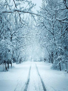 Katebackdrop:Kate Winter Scenery Snow Road Forest Photography Backdrop