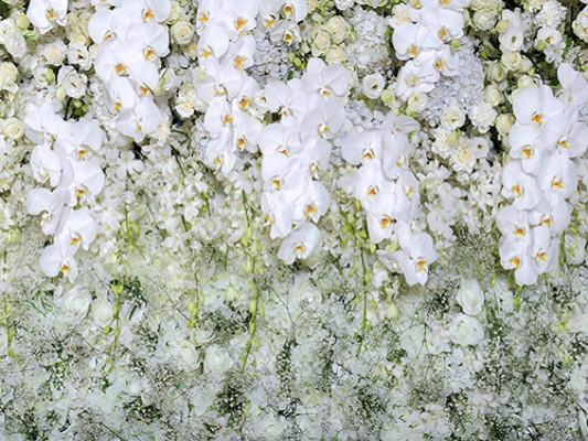 Katebackdrop:Kate White Floral Green Spring Backdrop Scenery Holiday Photography