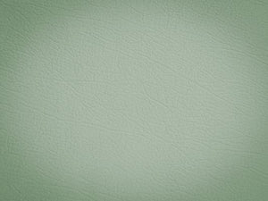 Katebackdrop:Kate Vintage Green Pu Textured Wall Backdrops For Studio