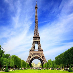Katebackdrop:Kate Eiffel Tower Lawn Sunshine Backdrop for Photography