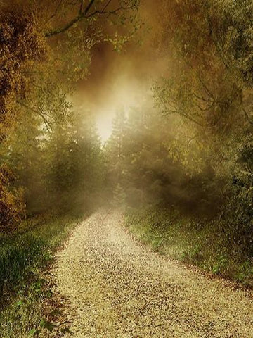 Katebackdrop:Kate Autumn Fantastic Forest Scenery Backdrop With Road For Photography