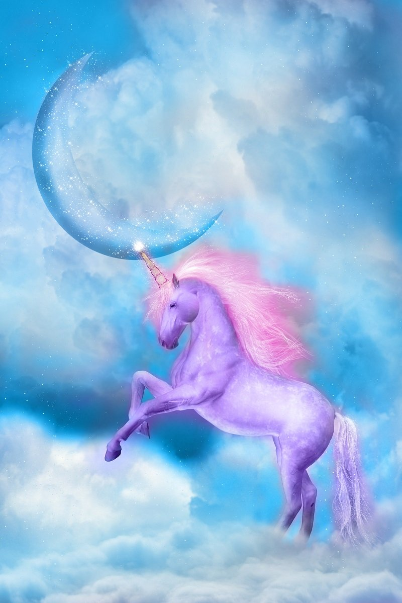 Katebackdrop:Kate Purple unicorn in blue sky with clouds Birthday Baby Shower photo booth