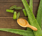Unbelievable benefits of ALOE VERA