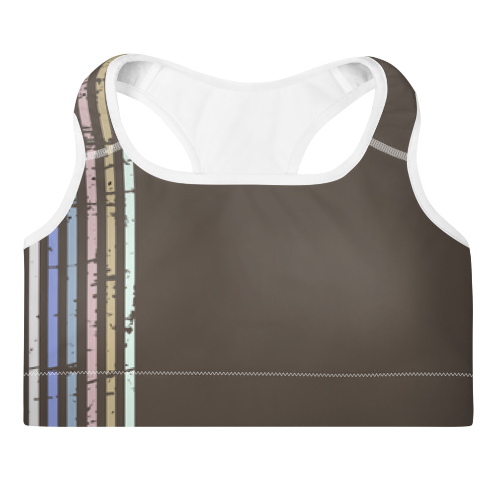 Lenni Retro Stripe Brown Sports Bra