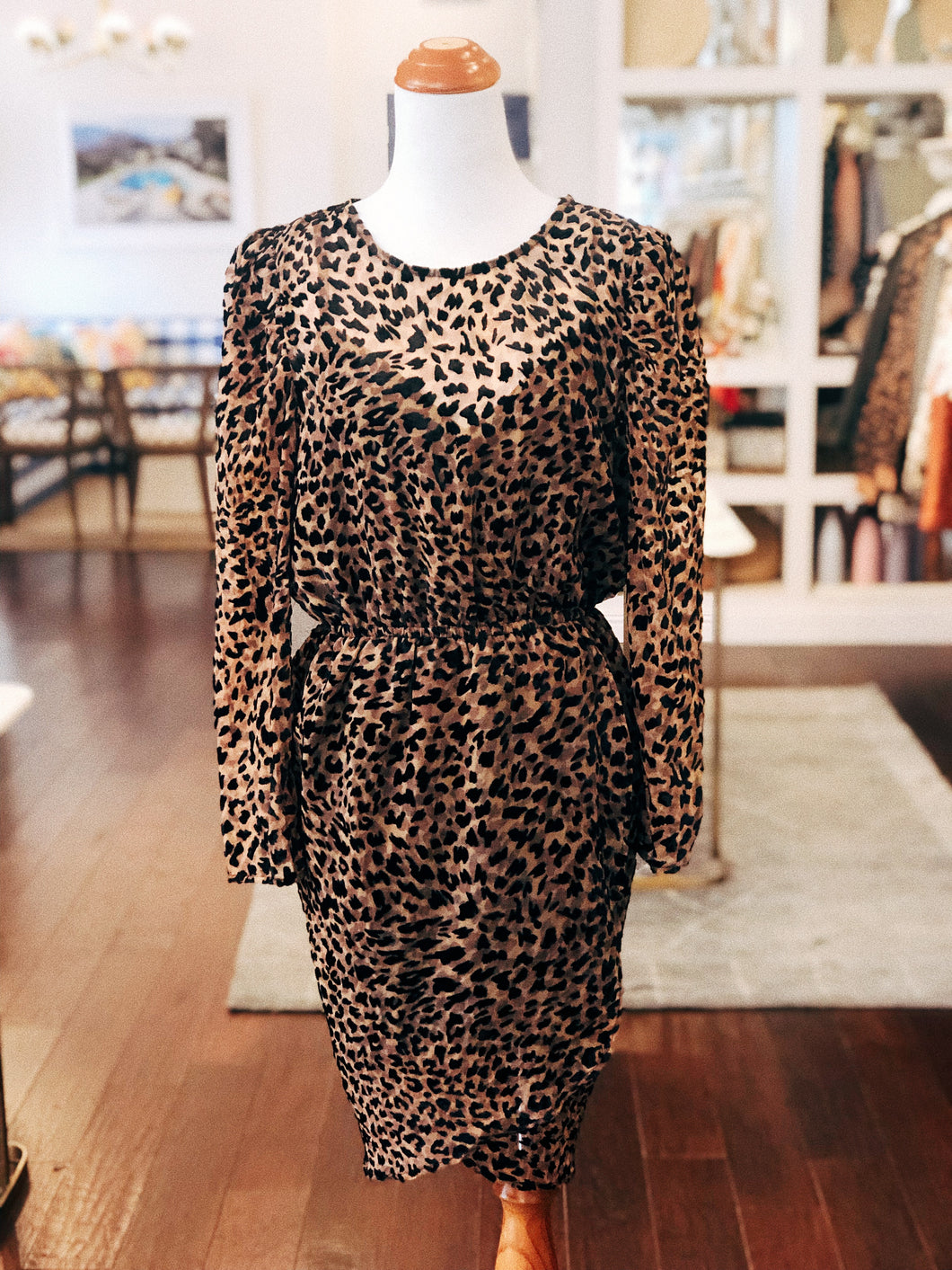 Brown Velvet Leopard Dress