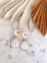 Scallop Shell Drop Earrings