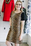 Leopard Print Ombre Stripe T-shirt Dress