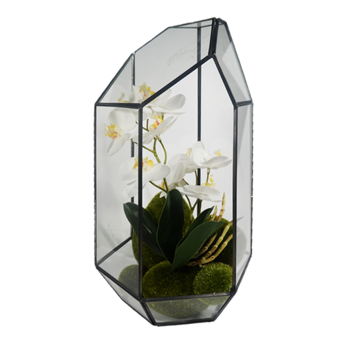 Terrarium with Orchids