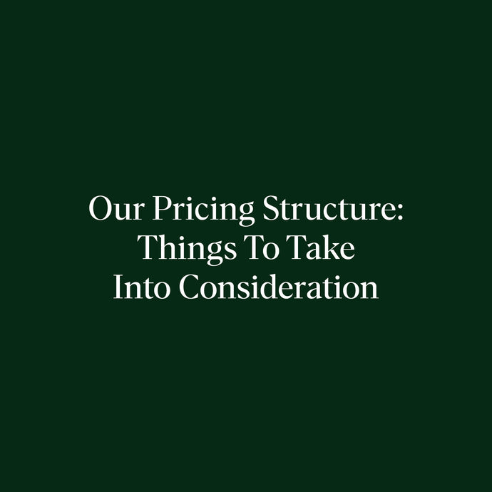 Our Pricing Structure—Things To Take Into Consideration