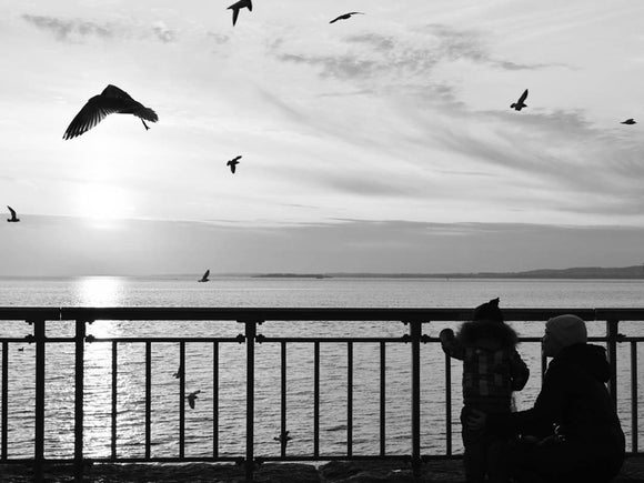Daydreams of a Motherless Child