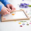 Flower Pressing Workshop Sunday 22nd September 2019 11am - 1pm BOOK USING LINK IN PROFILE