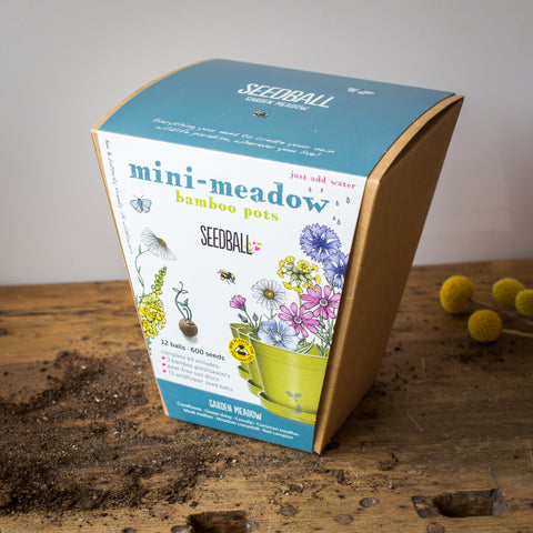 Mini Garden Meadow Mix