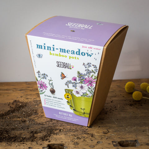 Mini Meadow Butterfly Mix