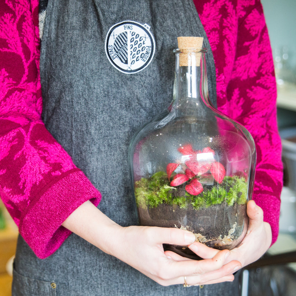 Terrarium Making Workshop Sunday 17th May 2020 11am - 1pm
