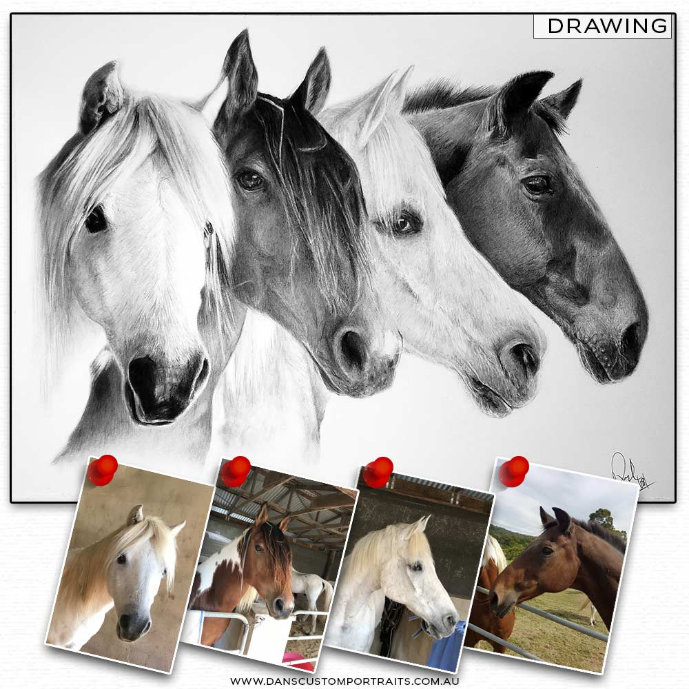 Realistic Detailed Custom Portrait Drawing Pet Horse