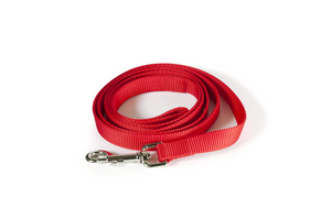 Red nylon simple leash
