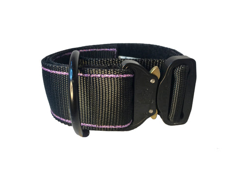 "2"" Cobra Buckle Collar"