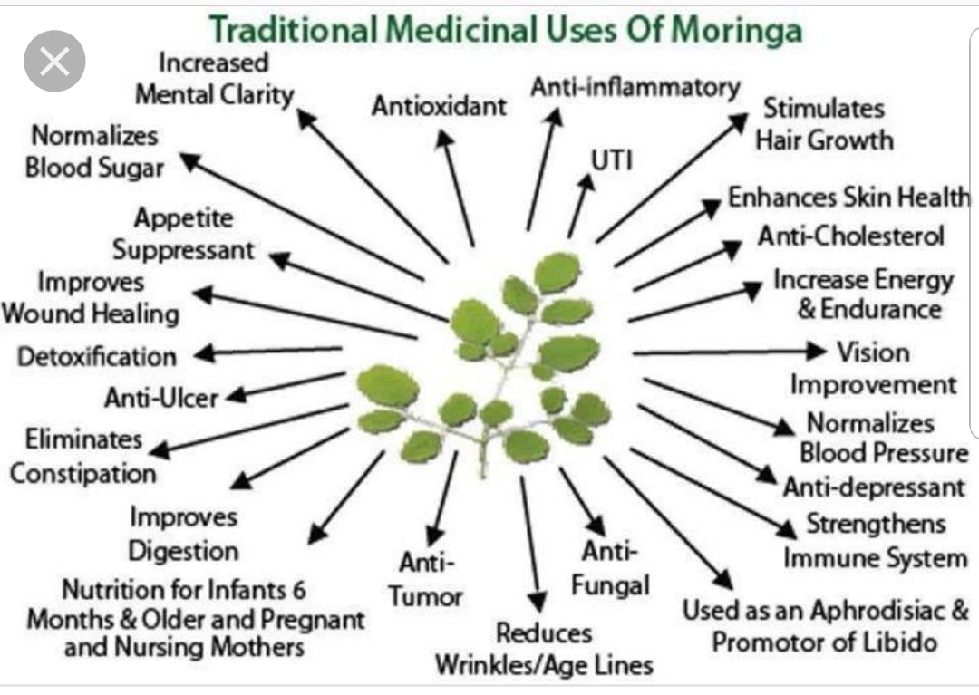 Moringa cures hundreds of medical issues. It promotes healthy blood pressure, cholesterol, enhances skin health, anti inflammatory, antioxidant, increased mental clarity, normal blood sugar, enhances skin health, normalizes blood pressure, immune system