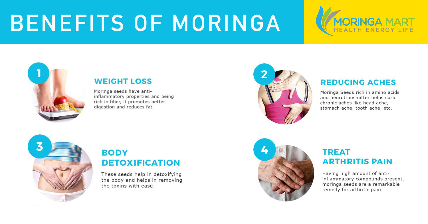 Bundle 3 Month Supply of 100% Organic Moringa Oleifera & SAVE