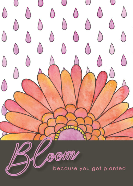 bloom because you got planted