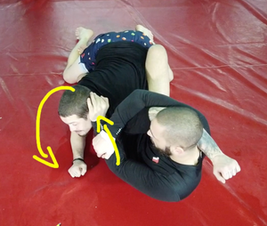 The DYNAMIC Butterfly Guard