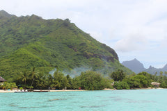 Moorea - Photo by Dawn Shipley