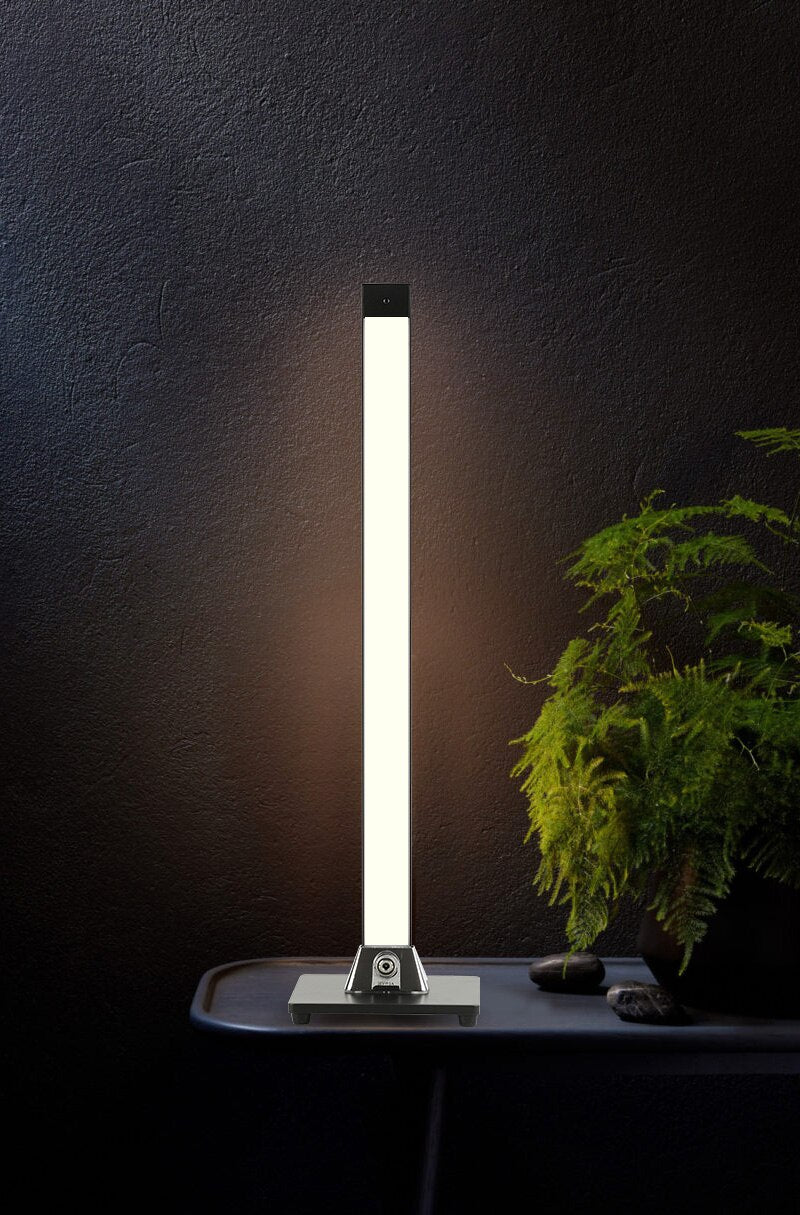Sauve LED Table + Floor Lamp