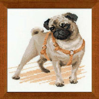 Riolis Cross Stitch - Pug Dog
