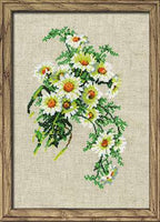 Riolis Cross Stitch - Bouquet of Chamomiles